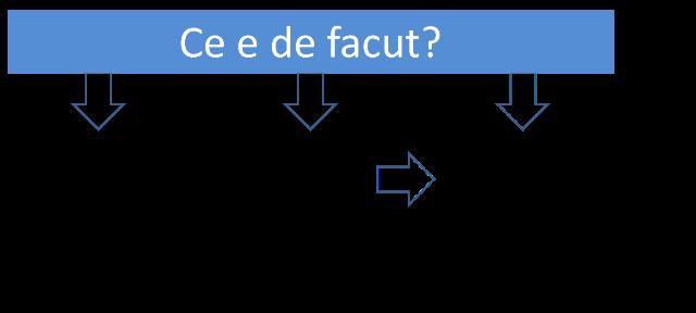 schema economica actiune